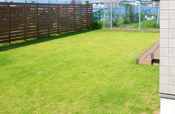 芝生 施工例
